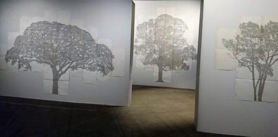 La série 'Perimetros' de Johanna Calle compose du texte dactylographié sur papier notariè