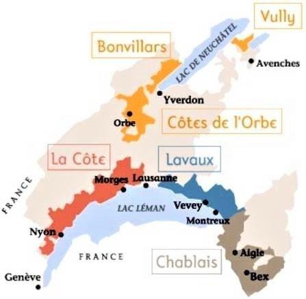 Suisse, nord du lac Léman, là où sont les grands terroirs du chasselas