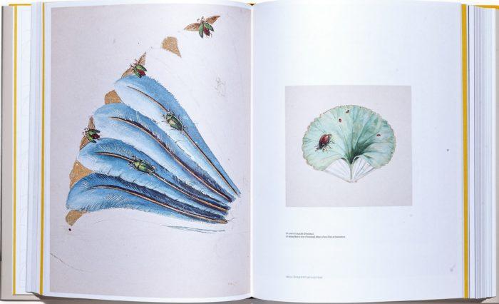 Carton dessiné à la gouache extrait du livre Duvelleroy