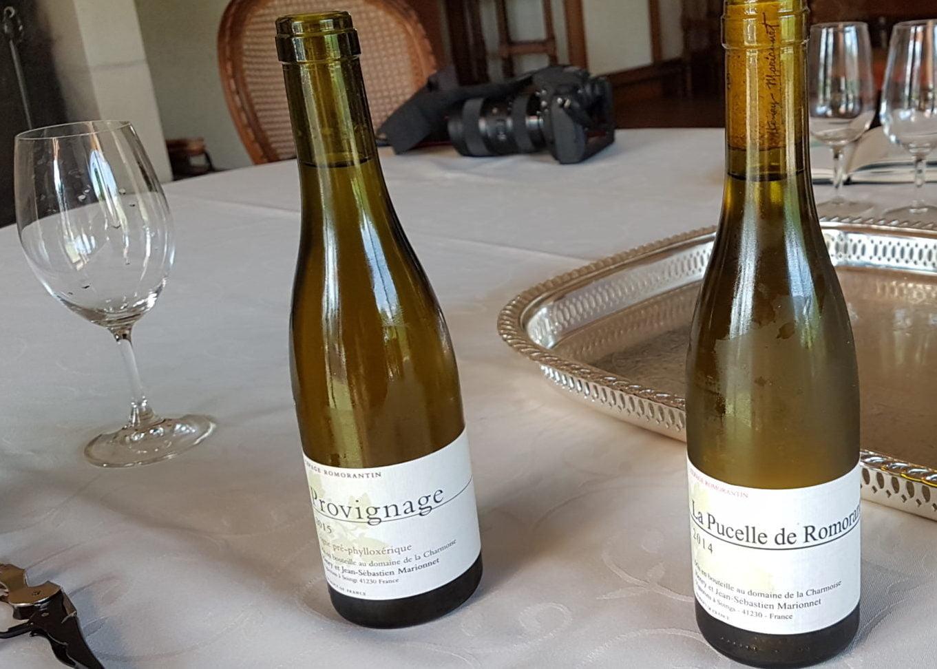 Le Provignage et La pucelle de Romorantin, des vins rarissimes