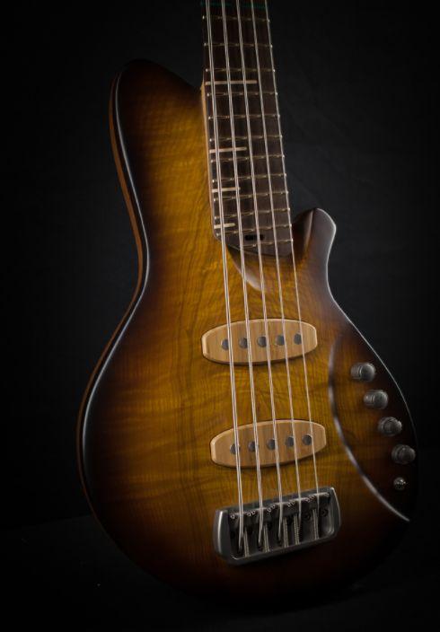 Basse Pulsar 5 cordes, guitare Alquier