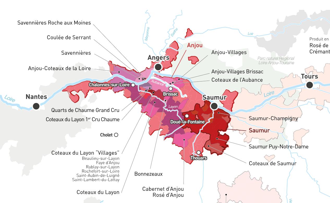 Un aperçu des nombreuses appellations de l'Anjou