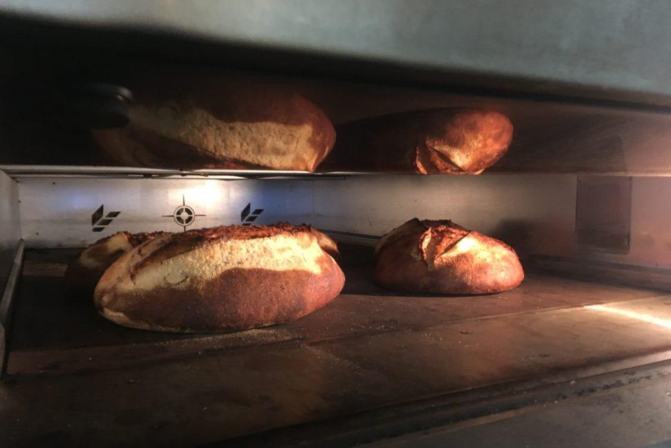 Miches au fournil (boulangerie Sain) : La cuisson revêt une importance fondamentale pour réaliser un pain à la croûte craquante, à la mie moelleuse tout en étant digeste