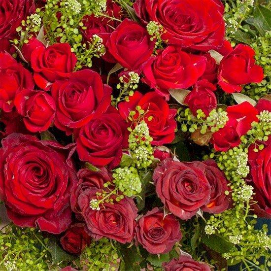 Rouge Baiser, le bouquet d'Aquarelle