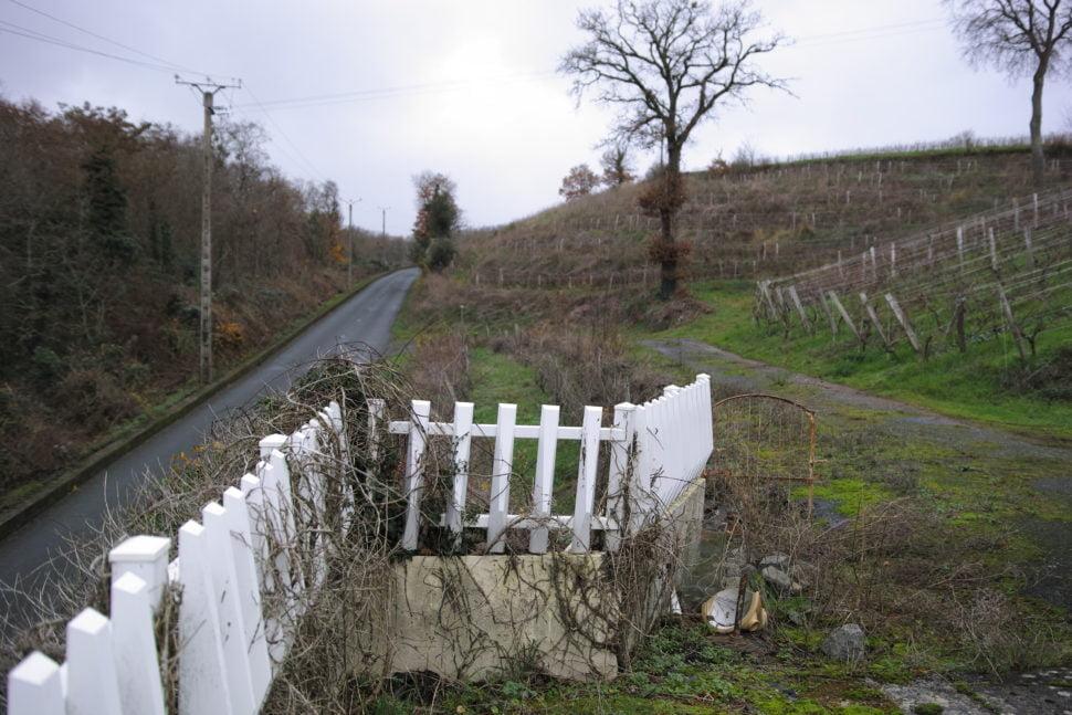 Les coteaux sur lesquels la vigne renaît, et une splendide nature protégée constituent un lieu idéal pour le développement de l'oenotourisme.