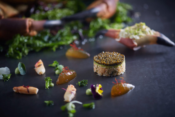 Tourteau Caviar Wahid